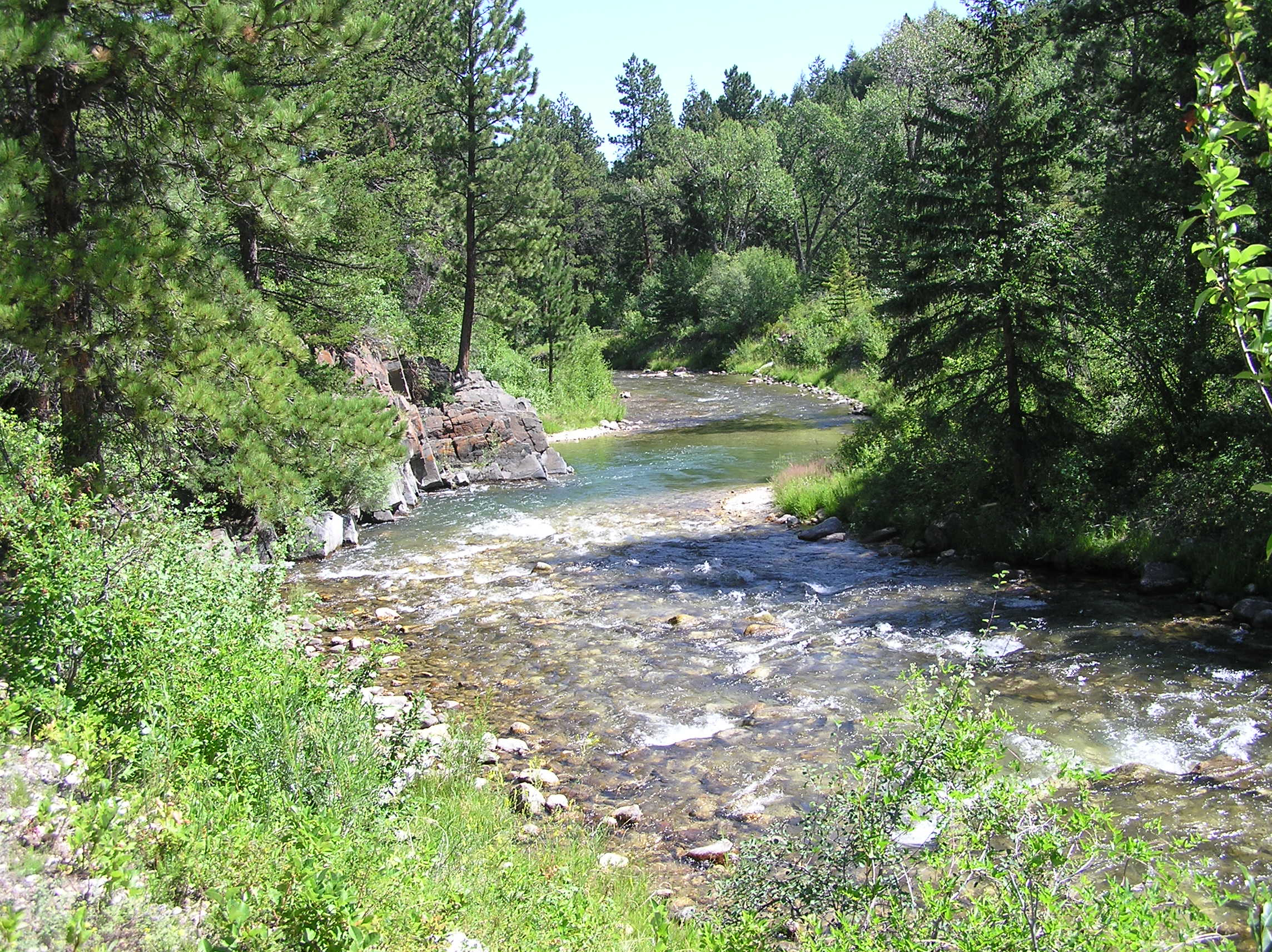Wyoming game and fish department little bighorn river for Wyoming out of state fishing license