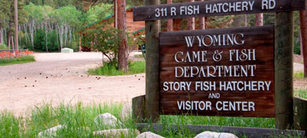 Hours Of Operation The Story Fish Hatchery Grounds Are Open From 8 Am
