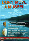 Don't Move a Mussel Video