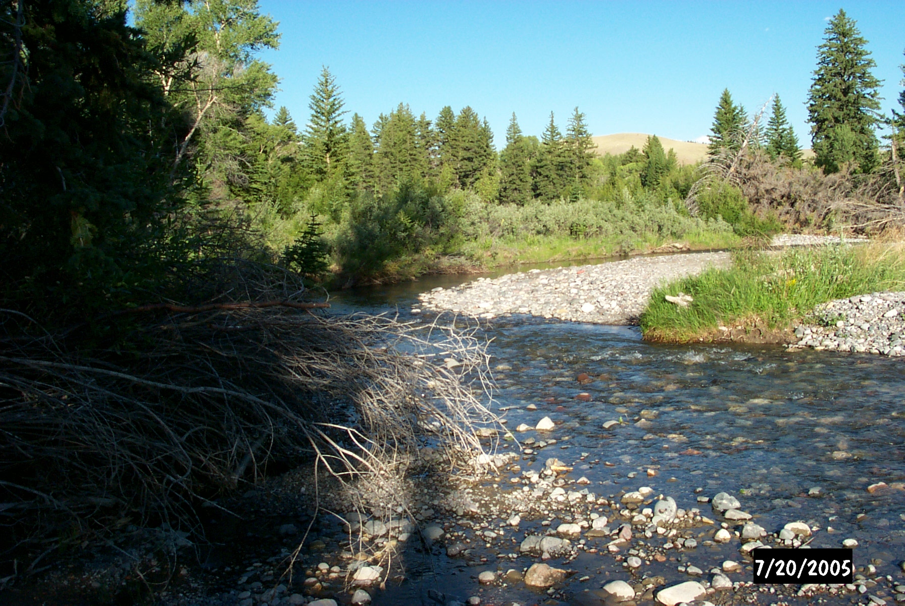 Wyoming game and fish department bear creek upper for Fish and stream