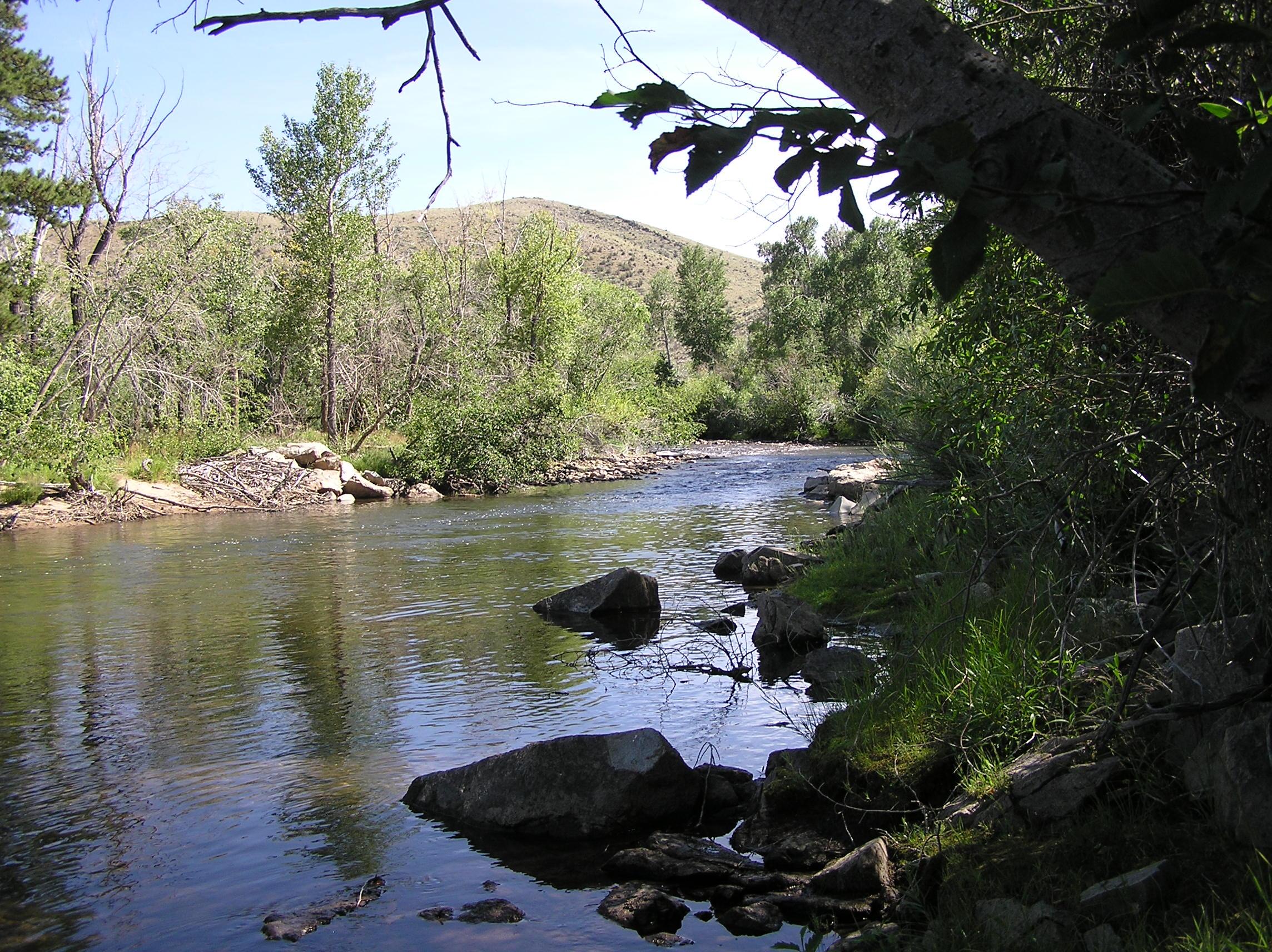 wyoming game and fish department encampment river