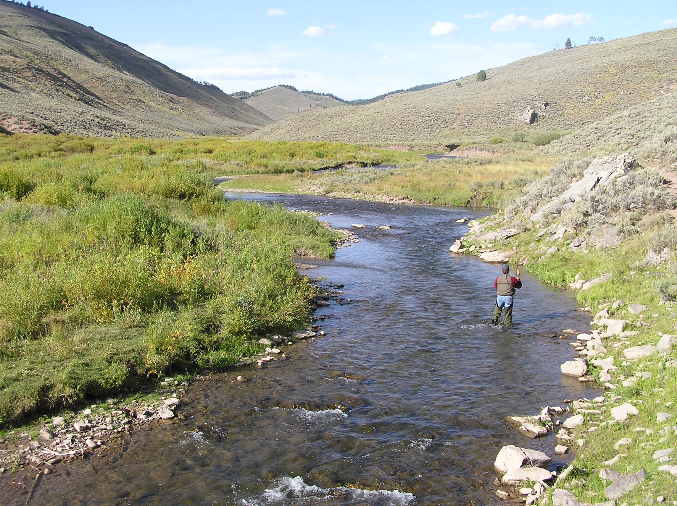 wyoming game and fish department smiths fork river