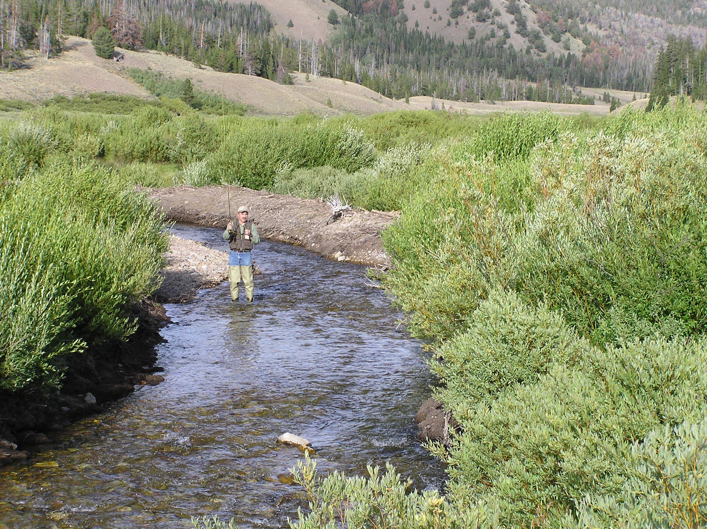 Wyoming game and fish department fish creek wyoming range for Wyoming game and fish maps