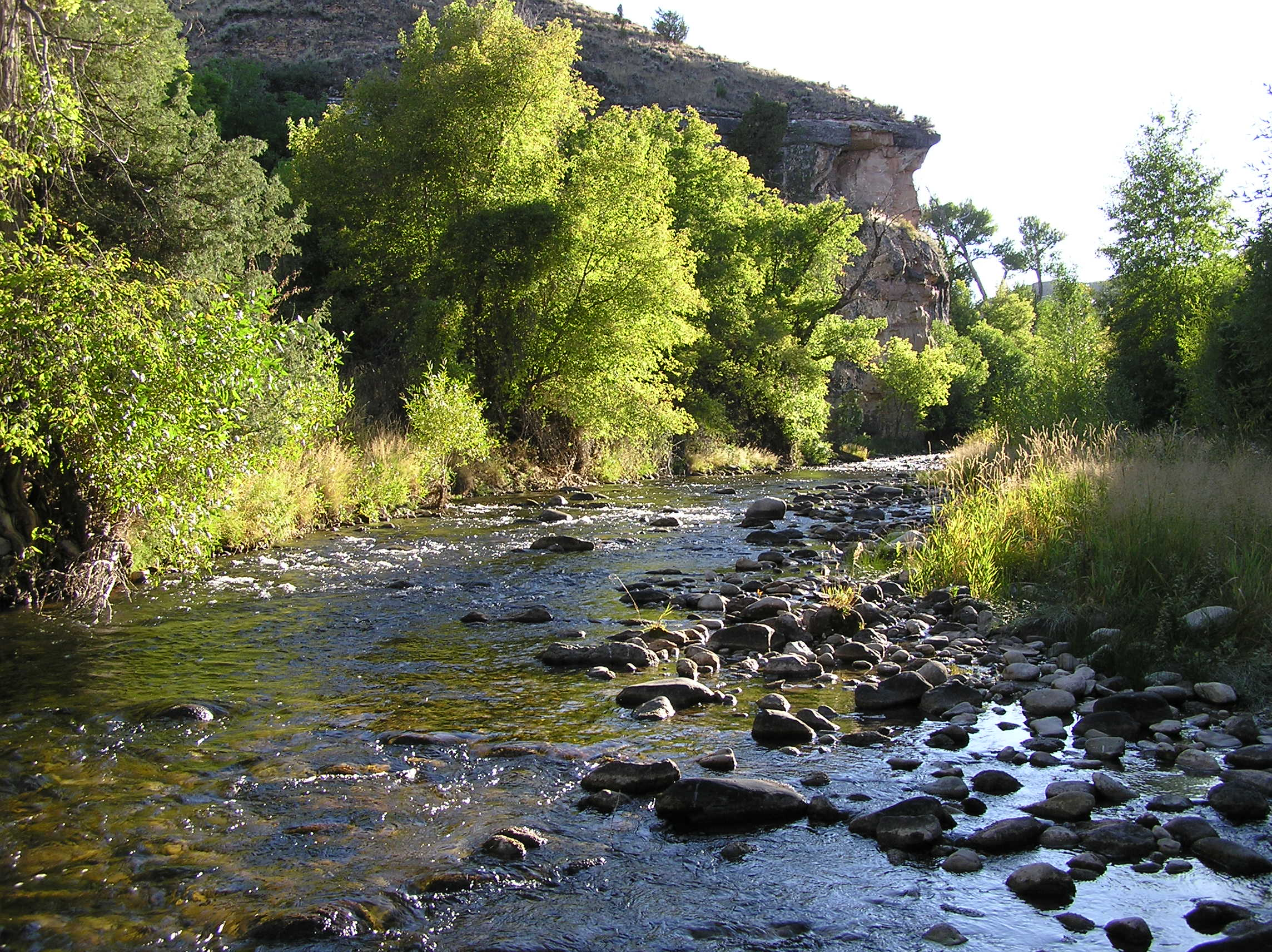 wyoming game and fish department powder river middle fork