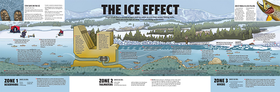 Ice Effect Info Graphic
