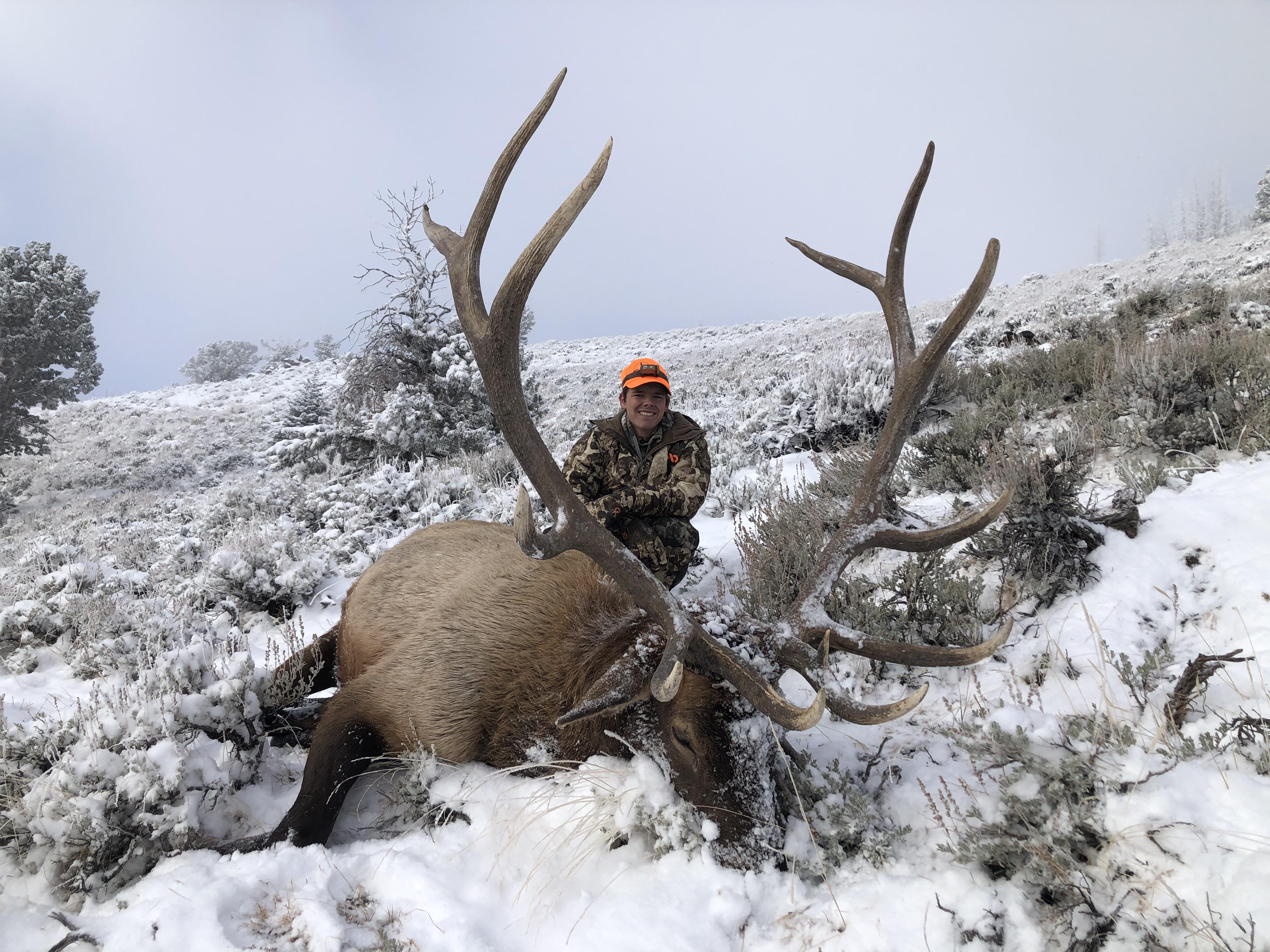 2020 Elk Winner