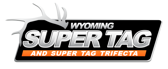 Super Tag Logo