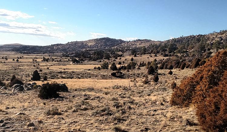 Wyoming Game and Fish Department - Mule-Creek