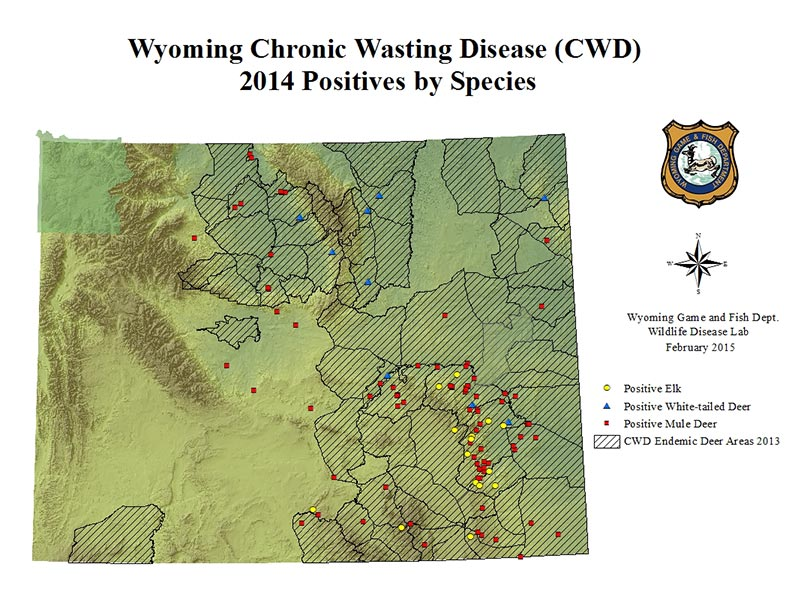 Chronic wasting disease wyoming game and fish seeks for Wy game and fish