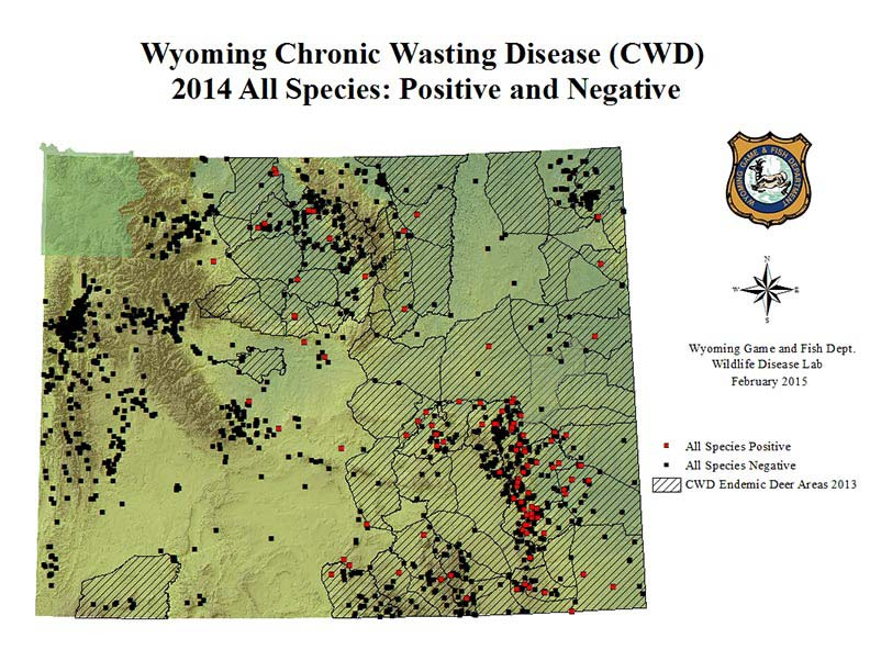 Chronic wasting disease wyoming chronic wasting disease for Wyoming game and fish