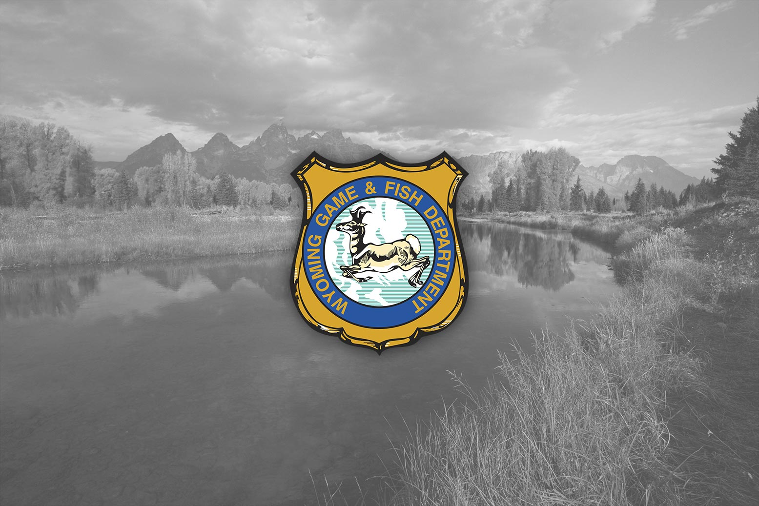 Wyoming game and fish department online and in person for Wyoming game and fish regulations