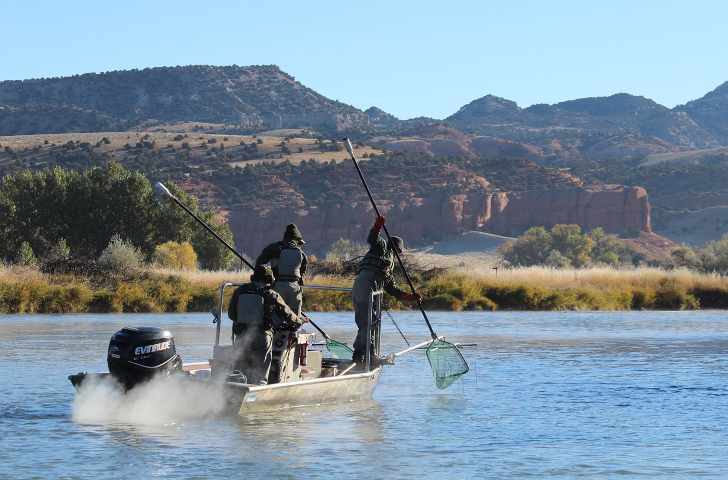 2d50e0db9ede Wyoming Game and Fish Department - Trends of the Bighorn River trout fishery