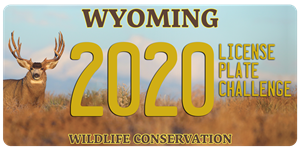 Drivers with Wildlife Conservation Plates enjoy new benefits