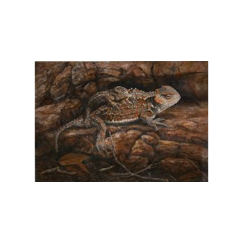 2013 Horned Toad Lizard Print & Stamp