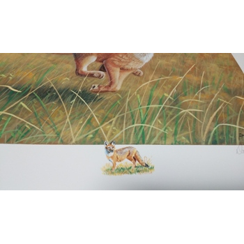 2016 Swift Fox Remarque Print