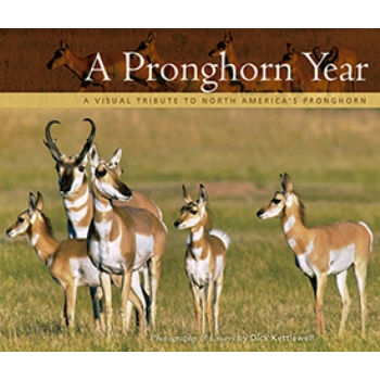 Pronghorn Year